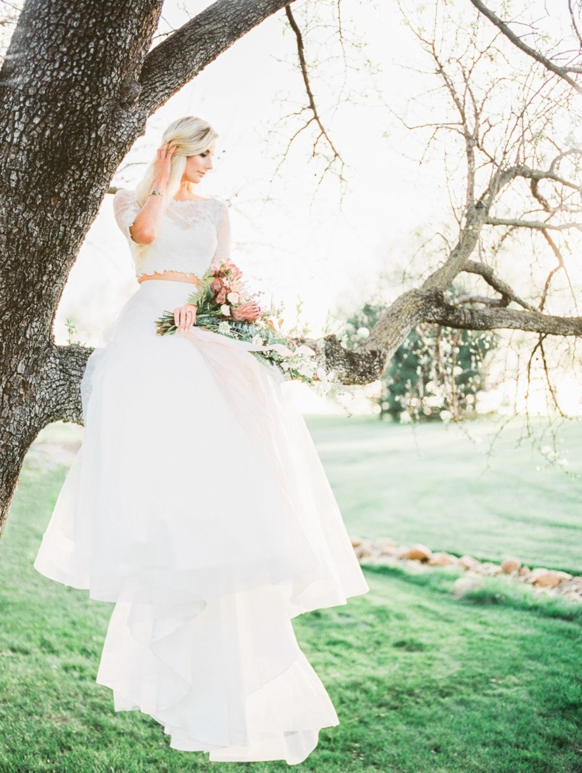 bride sits in a tree for a fine art film photographer at a wedding