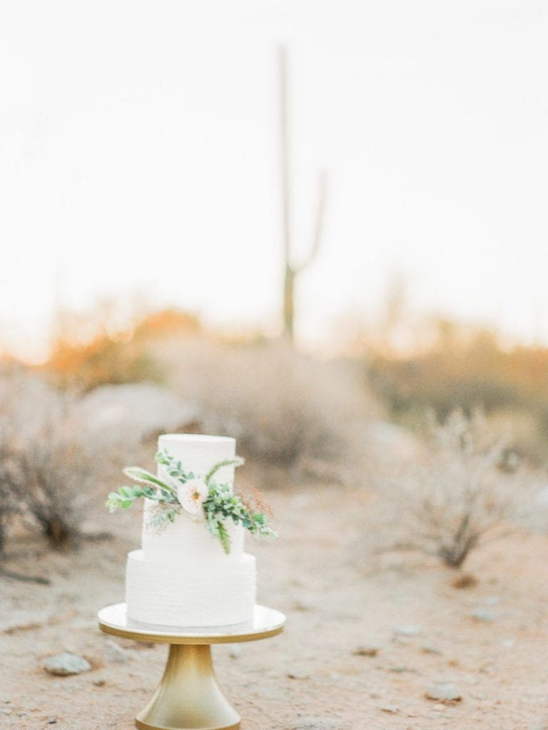 cake at a wedding in the Arizona desert