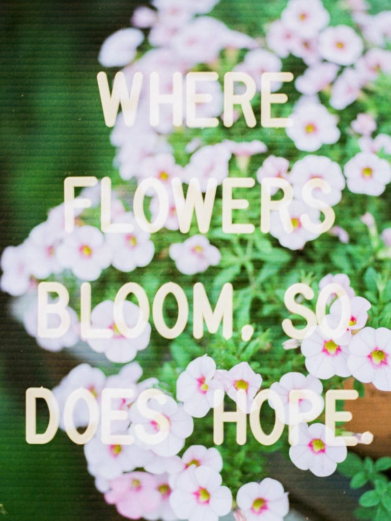 """Where flowers bloom, so does hope"" 