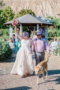 Tiffany + Scott   just married in Palisade, CO   Colorado elopement photographer