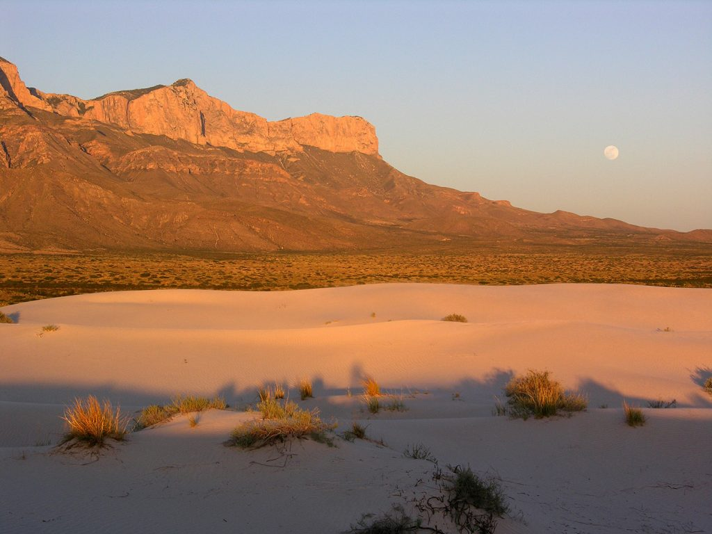 Eloping in Guadalupe Mountains National Park