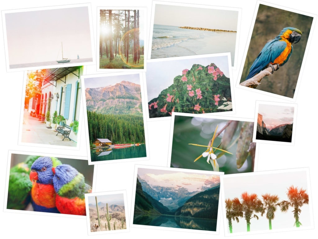 print shop | landscape, film, & travel photography prints for sale