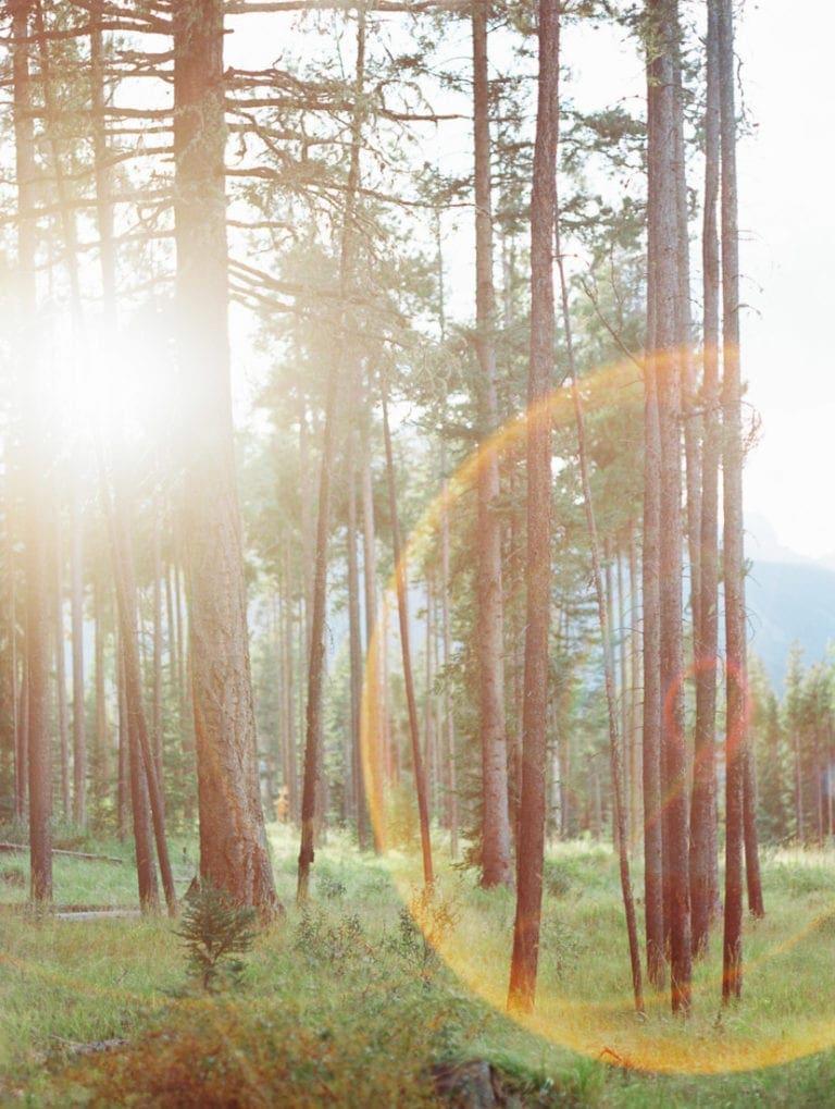 Seeing Light & Creating Feelings