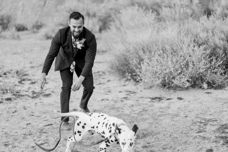 dog at an elopement in Moab, Utah