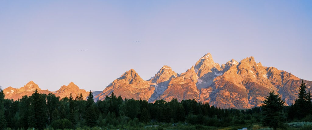 View of the Grand Teton Mountains at sunrise on a clear day during summer.