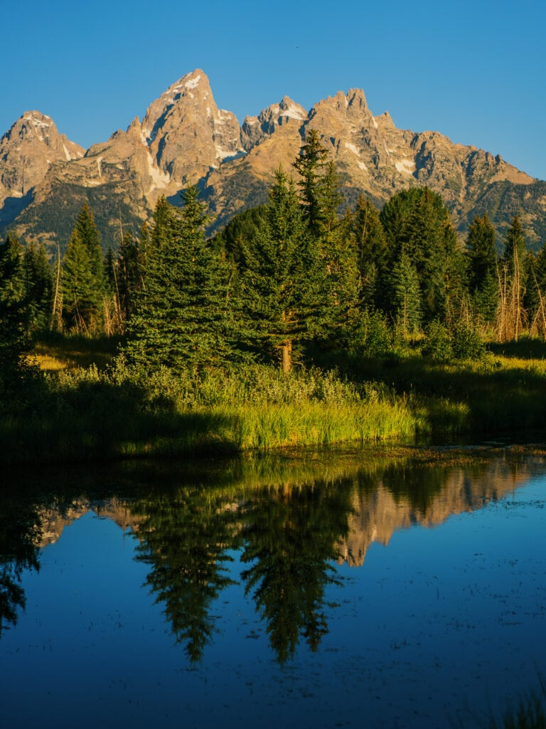 View of Grand Teton from Schwabacher Landing after sunrise with a reflection in the beaver ponds.