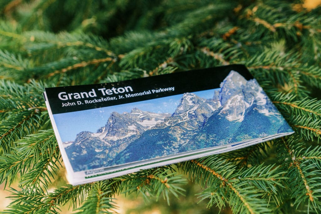 Map of Grand Teton National Park resting on a spruce tree branch.