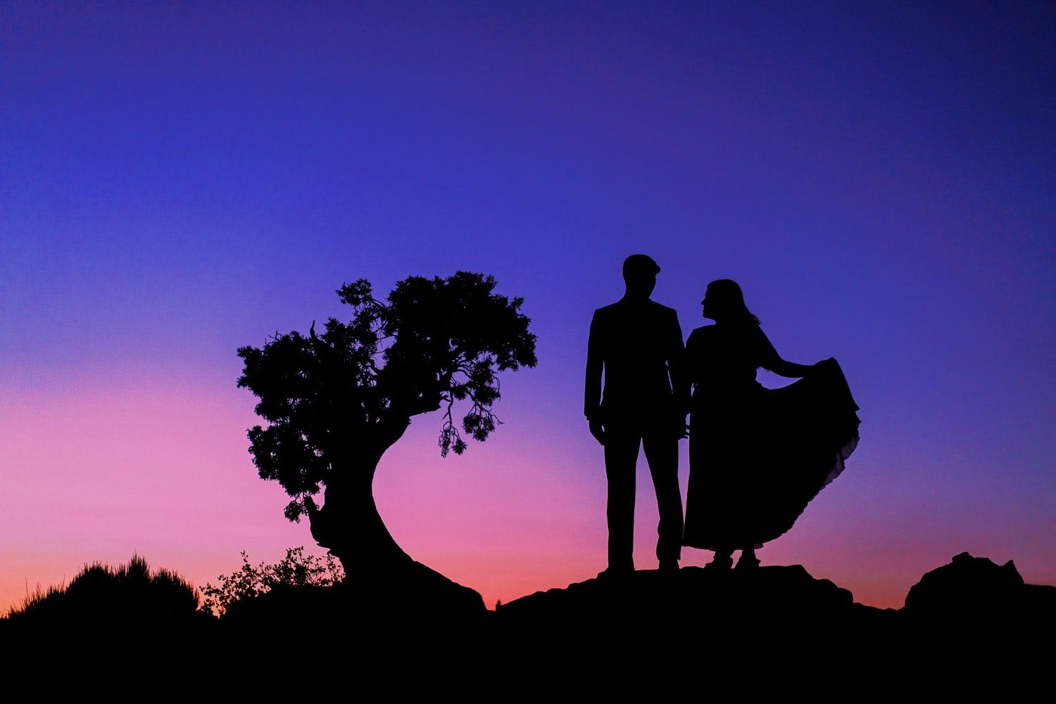 Silhouette of a bride and groom at sunset with a tree in Moab, Utah.